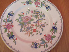 Stunning Aynsley bone china Pembroke  Dinner plate dia 27cm