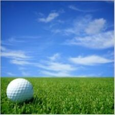 GOLF BALLS 10 for SALE for YOUR Summer Training,Feed your passion'15 GreenGrass