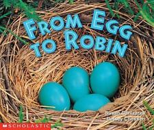 From Egg To Robin (Science Emergent Readers)