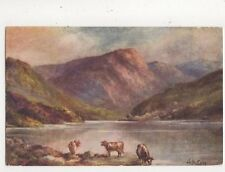 Near Bettws Y Coed LM Long Vintage Art Postcard 702a