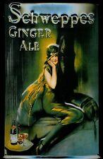 Blechschild Schweppes Ginger Ale nostalgisches Schild Werbeschild 20x30 Softdrin