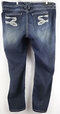 Seven7 Luxe Skinny Jeans Sparkly Glitter Women's Plus 20