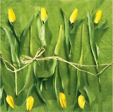 "Spring Paper Luncheon Napkins 2x20 pcs 13""x13"" Yellow Green Tulips"