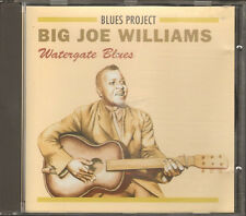 BIG JOE WILLIAMS Watergate Blues 24 track CD NEW 1980-1991