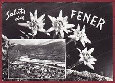 BELLUNO ALANO DI PIAVE 04 FENER - SALUTI da... Cartolina FOTOGRAFICA viagg. 1968