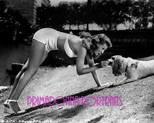 "RITA HAYWORTH 8X10 Lab Photo 1940s w/ Cocker Spaniel Dog, ""COBURN"" Photographer"