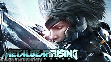 METAL GEAR RISING VENGEANCE [PC/Mac] STEAM key