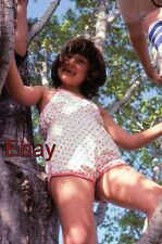 nn AMATEUR Old 35mm Slide-Photo- Young Girl Up a Tree - 1984