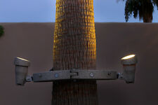LED Palm Tree Landscape Lighting