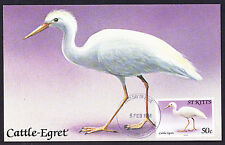 St Kitts Maximum postcard 1981 Cattle Egret Bird stamp on card PC Birds