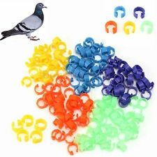 100X 8mm Poultry Chicken Pigeon Bird Chicks Parrot Leg Bands Duck Clip-on Rings