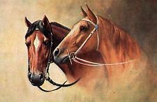 290 VINTAGE HORSE IMAGES ON CD ROM