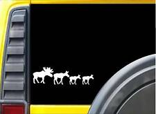 Moose Family Sticker K930 8 inch decal
