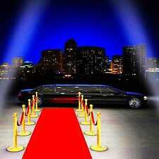 red carpet 10'x10' CP Backdrop Computer-painted Scenic Background HY-CM-2180