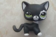 Littlest Pet Shop RARE Short Hair Cat #2249 Blythe Black White Standing LPS