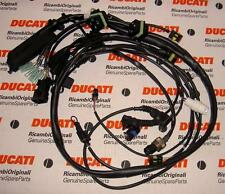 1999 Ducati 748SPS + Senna fuel injection main wiring harness w/P8 ECU 51011111A