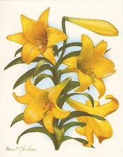 VINTAGE YELLOW ASIATIC LILY LILIES FLOWERS BOTANICAL SPRING NOTE CARD ART PRINT