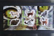 Katzen 27 cats Chats Tiere animals pets Fauna Block KB sheets postfrisch ** MNH