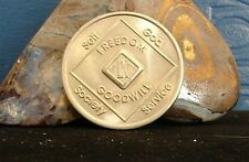 Narcotics Anonymous Vintage Bronze NA Medallion 9 Year Token Chip Coin