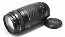 Canon EF 75-300mm f/4-5.6 lll Telephoto Zoom Lens for Canon SLR Cameras