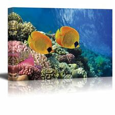 "Canvas Prints Wall Art - Coral Reef and Tropical Fish in Sunlight - 12"" x 18"""