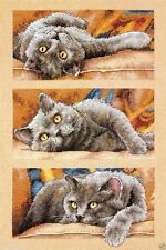 "Dimensions Gold Counted Cross Stitch kit 10"" x 15"" ~ MAX THE CAT #70-35301 Sale"