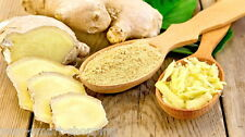 Ginger Root Extract powder Support Digestive System & Diabetic Health 150gr