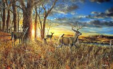 Out For the Evening By Jim Hansel Deer Buck Print Signed and Numbered 29 x 19