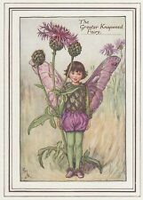 CICELY MARY BARKER c1930 GREATER KNAPWEED FAIRY Painting Vintage Art Book Print