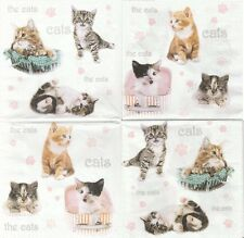 2 Serviettes en papier Chat Chaton Decoupage Paper Napkins Little Cats