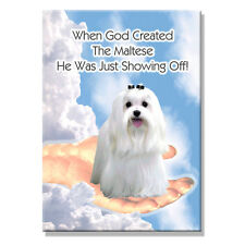 MALTESE God Showing Off FRIDGE MAGNET New DOG