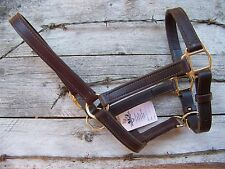 Halter - Leather Stable, Double Stitch (Cob Size)
