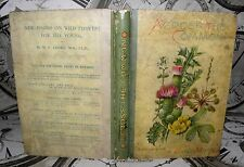 Across the Common After Wild Flowers Uncle Matt- T. Nelson 1895 HB