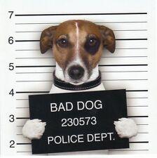 Klappkarte de luxe: Jack Russel - Terrier Chico als Gangster
