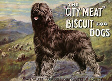 BRIARD DOG FOOD ADVERT LOVELY GREETINGS NOTE CARD