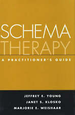 NEW Schema Therapy: A Practitioner's Guide by Jeffrey E. Young PhD