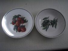 William Sonoma Set of 2 Harvest Pasta/Salad Bowls
