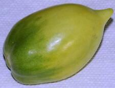 Tomato Seeds - CHILE VERDE - Perfect for Canning - GMO FREE - 40 Seeds