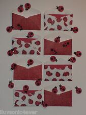 8 ladybugs mini envelopes confetti mini note cards