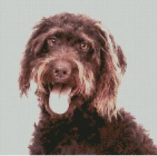 """Labradoodle Brown Dog Counted Cross Stitch Kit 10"""" x 10"""" D2398"""