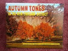 AUTUMN TONES  NEW  SOUTH  WALES  UNUSED  VIEW  FOLDER  [437]