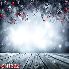 Xmas Tree Snow Winter Outdoor 10x10 FT PHOTO SCENIC BACKGROUND BACKDROP SN1692