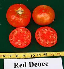 Tomato Seeds - RED DEUCE VFF/TMV - Hybrid Bush Tomato Variety - 25 Seeds