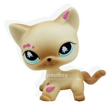 Littlest Pet Shop Messiest Cream Siamese Splash Cat Kitty Blue Eyes LPS #816