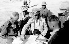 WW2 Photo WWII German General Erwin Rommel with Staff North Africa  / 2274