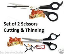 Set Of 2 Pcs Hairdressing Hair Cut Scissors & Thinning Shears Scissors Steel