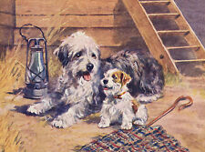 OLD ENGLISH SHEEPDOG AND TERRIER PUPPY DOG GREETINGS NOTE CARD