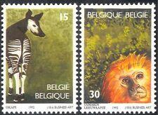 Belgium 1992 Okapi/Tamarin/Animals/Nature/Wildlife/Antwerp Zoo 2v set (n43199)