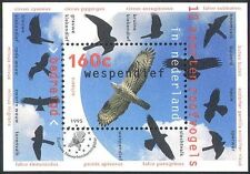 Netherlands 1995 Birds/Raptors/Honey Buzzard/Eagle/Red Kite/Hawks 1v m/s (b817)