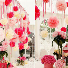 20pcs Outdoor Decor Flower Balls Pom Poms Xmas Home Wedding Party's Tissue Paper